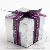 silver silk box and lid favour