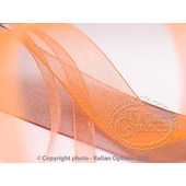 Organza Ribbon (26 colours and 3 width sizes)