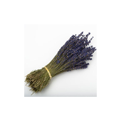 Dried Lavander Bunch 250 Stems 30cm Long