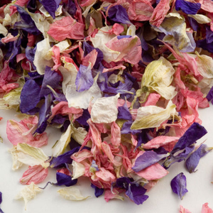 Wedding Confetti Natural Dried Delphinium Petals Mixed Colours